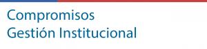 gestion-institucional