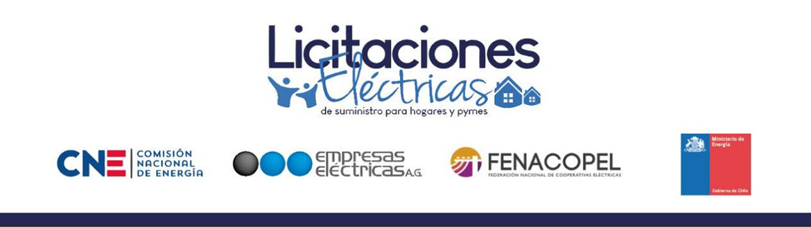 29 generating companies present their offers in the Electric Supply Tender